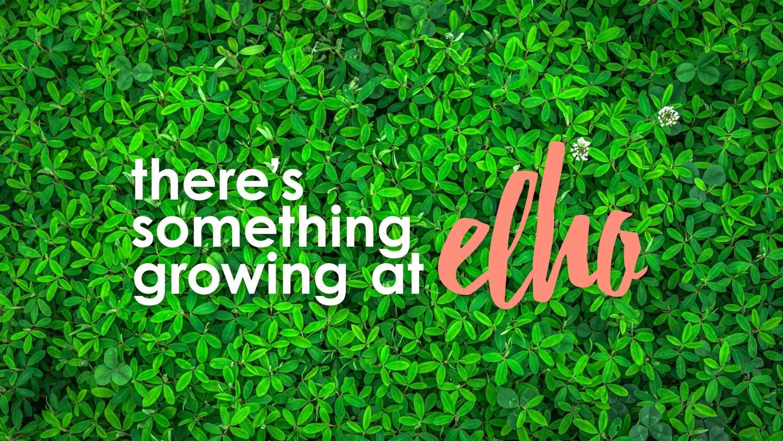 Elho visual met tagline en logo